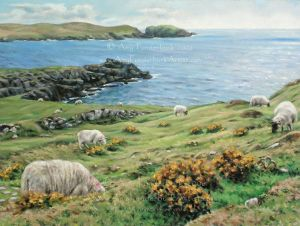Dursey_Island_Sheep_pastel_on_sanded_paper_mounted_on_board_9x12_Copyright_Amy_Funderburk_2006_All_Rights_Reserved_AF_Website_Use_Only.jpg