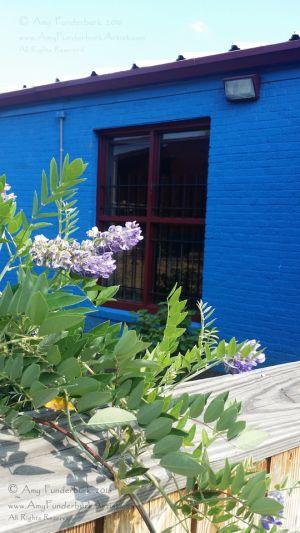 Cobalt Blue with Garden - my studio building, 915 Bridge Street